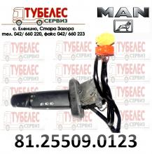 Ключ светлини за МАН TGA/TGL/TGS/TGX 81255090123